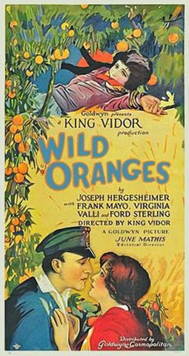 Wild Oranges poster